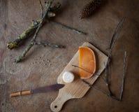 Französische Käse Lizenzfreie Stockbilder