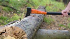 Frapper le tronc d'arbre avec la hache Fermez-vous vers le haut de la vue banque de vidéos