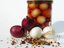 Frasco com cebolas e especiarias Fotografia de Stock Royalty Free