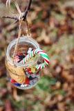 Frasco com os doces que penduram na filial de árvore Imagens de Stock
