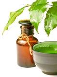 Frasco com petróleo e planta Fotografia de Stock
