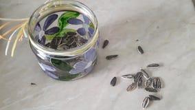 Frasco com sementes de girassol Foto de Stock