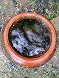 Frasco completamente da água Fotografia de Stock Royalty Free