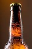 Frasco de cerveja Fotos de Stock Royalty Free