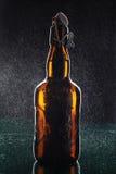 Frasco de cerveja Fotografia de Stock Royalty Free