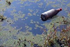 Frasco de cerveja em um lago. Imagens de Stock