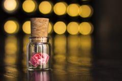 Frasco de vidro amarrado com uma fita Movimentação do flash de USB do bujão, movimentação instantânea original Rosa em uma garraf Fotos de Stock Royalty Free