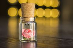 Frasco de vidro amarrado com uma fita Movimentação do flash de USB do bujão, movimentação instantânea original Rosa em uma garraf Imagens de Stock