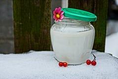 Frasco de vidro com leite, bagas do viburnum na neve fotos de stock