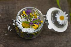 Frasco de vidro e ervas diferentes Foto de Stock
