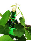 Frasco de vinho foto de stock