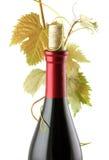 Frasco de vinho vermelho Fotografia de Stock Royalty Free