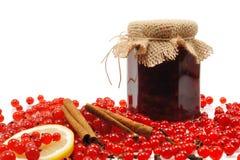 Frasco do atolamento caseiro da passa de Corinto vermelha com frutas frescas Imagens de Stock Royalty Free