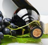 Frasco do close-up do vinho Imagem de Stock Royalty Free