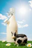 Frasco do leite imagens de stock royalty free