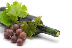 Frasco do vinho com folhas e videira da uva Foto de Stock