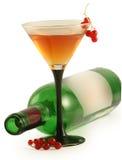 Frasco do vinho e do vidro Imagens de Stock