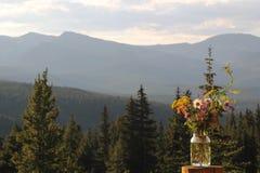 Frasco do Wildflower fotografia de stock