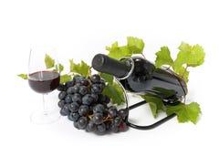 Frasco e uva de vinho vermelho isolados Fotografia de Stock Royalty Free