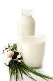 Frasco e vidro do leite com vaca do brinquedo Fotografia de Stock Royalty Free