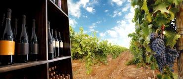 Frasco e vinhedo de vinho