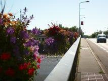 Frasco florido suspendido acima de um rio Fotografia de Stock Royalty Free