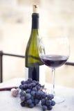 Frasco, vidro e uvas de vinho Foto de Stock Royalty Free