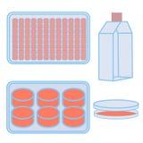 Frasco y placas para la cultivación de la célula ilustración del vector