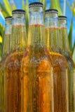 Frascos da cerveja Fotografia de Stock Royalty Free