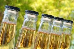 Frascos da cerveja Fotografia de Stock