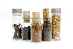 Frascos das especiarias Fotografia de Stock