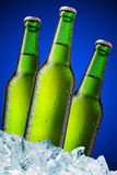 Frascos de cerveja verdes Foto de Stock Royalty Free