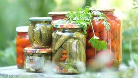 Frascos de vidro com vegetais salgados Colheita dos tomates e dos pepinos Tomates, pepinos, salgados para o inverno, a vídeos de arquivo