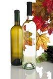 Frascos de vinho branco, gtapes e folhas da queda Fotografia de Stock