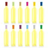 Frascos de vinho isolados ajustados ilustração royalty free