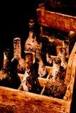 Frascos de vinho velhos na caixa de madeira Imagens de Stock