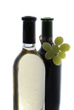 Frascos do vinho Fotografia de Stock Royalty Free