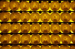 Frascos do vinho Foto de Stock