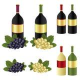 Frascos e uva de vinho ilustração stock