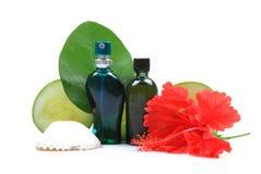 Frascos naturais do perfume e de petróleo do corpo fotos de stock royalty free