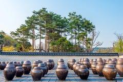Frascos ou frascos do kimchi em Coreia Foto de Stock