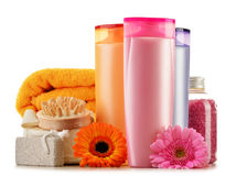 Frascos plásticos de produtos do cuidado e de beleza do corpo Imagem de Stock Royalty Free