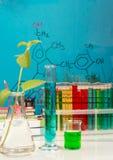 Frascos, tubos de ensayo con los líquidos, plantas y fórmulas en azul Foto de archivo
