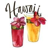 Frase da rotulação - Havaí Composição com os cocktail tirados mão da aquarela com Plumeria Fundo para o empacotamento de alimento ilustração stock