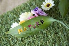 Fraseio da natureza na folha Fotos de Stock Royalty Free