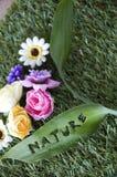 Fraseología de la hoja de la naturaleza con las flores Imagen de archivo