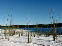 fraser νησί Στοκ Φωτογραφίες