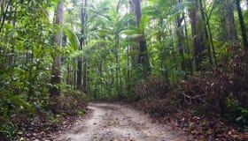 Fraser Island arkivfoto