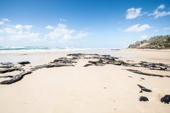 Fraser Island. royalty-vrije stock afbeelding