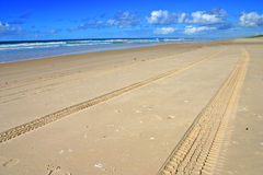 Fraser Island, Australia Royalty Free Stock Photography